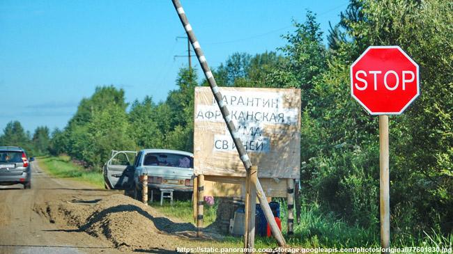 5 районов Нижегородской области избавлены откарантина поАЧС