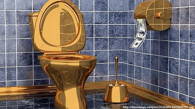 Администрация области купила туалетный ёршик засреднемесячную заработную плату врегионе