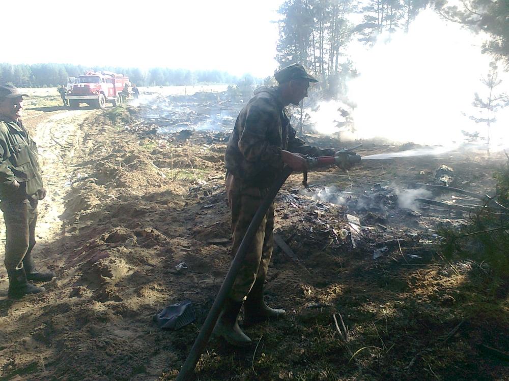 ВГусь-Хрустальном районе из-за поджога травы едва несгорела деревня