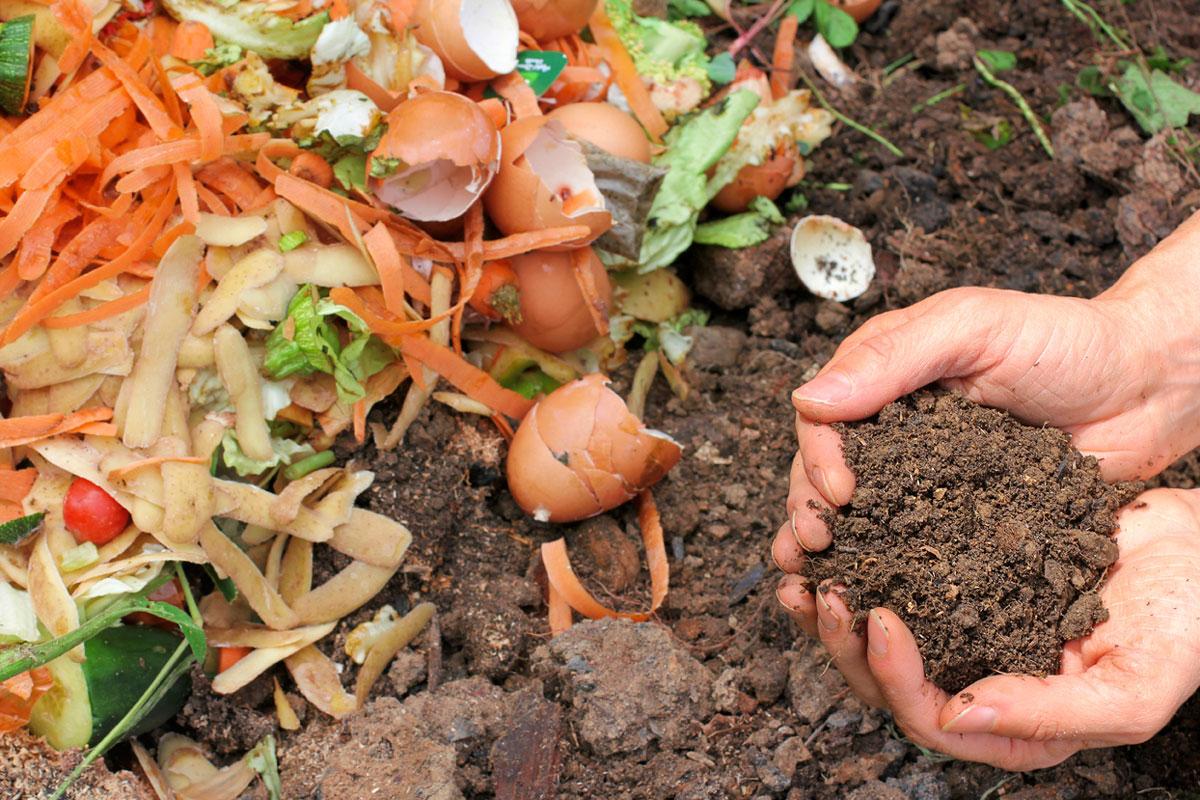 composting-main-image-1200.jpg