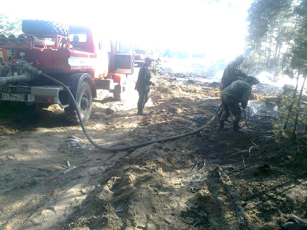 ВоВладимирской области из-за поджога травы чуть несгорела деревня