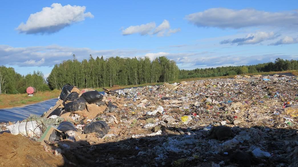 экология владимирской области в картинках ужас